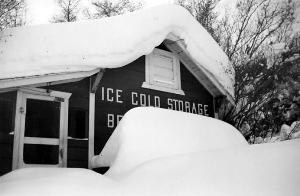 BCL-ice-cold-storage