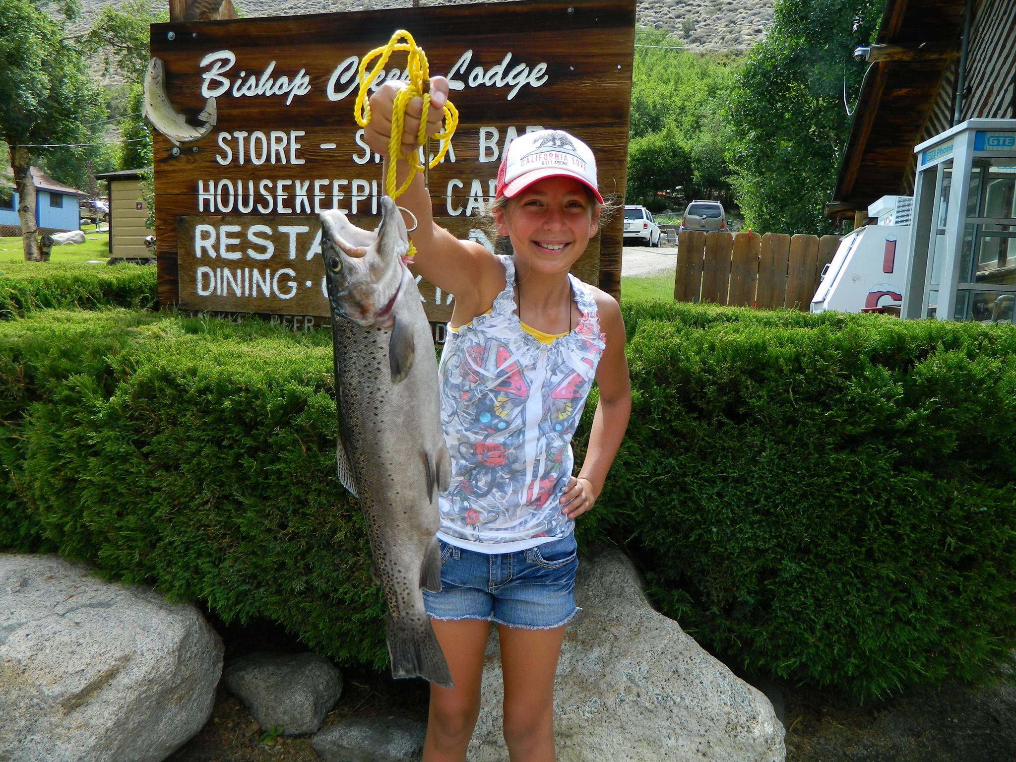 Premier family california fishing lodge bishop creek lodge for Bishop ca fishing