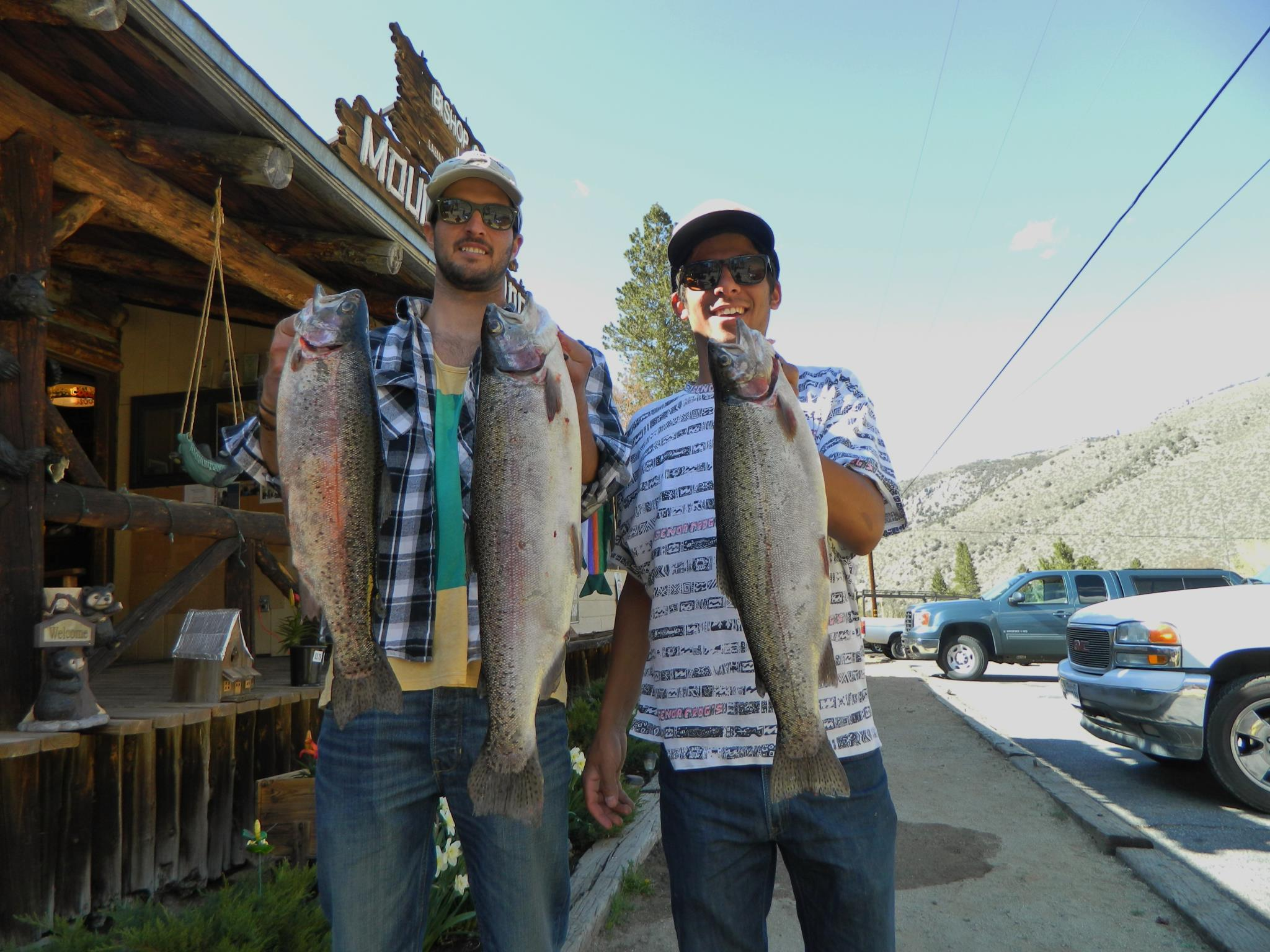 Superb fishing bishop creek lodge for Bishop fishing report