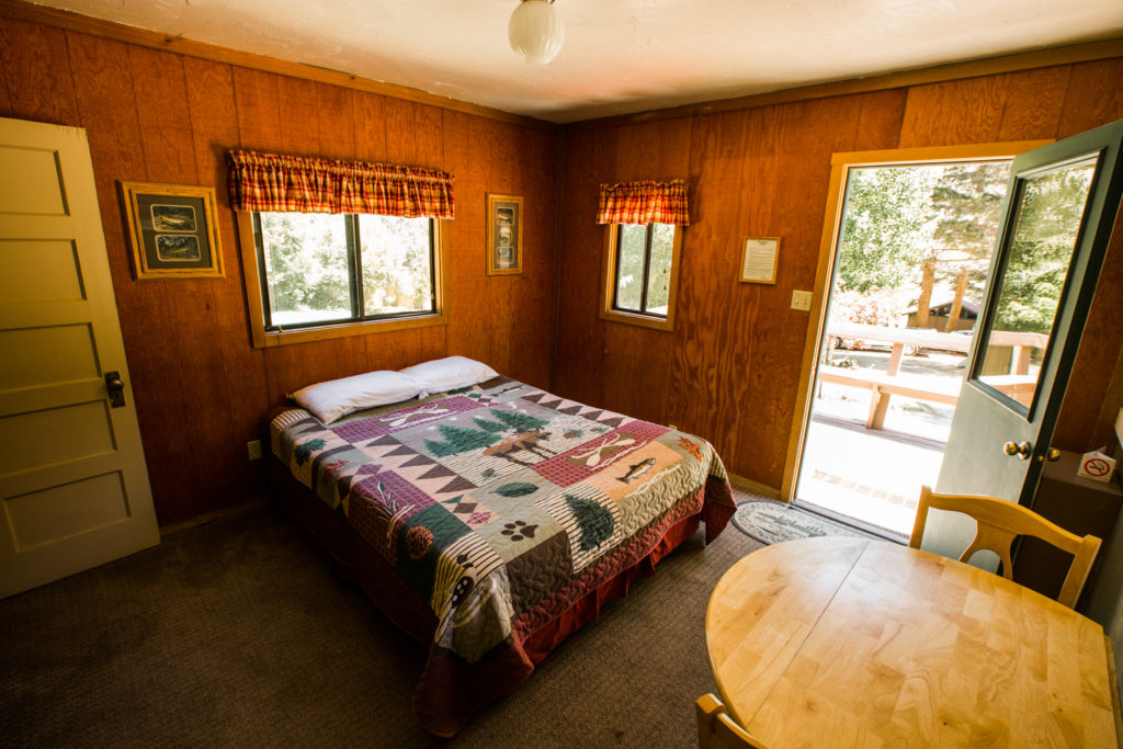 Cabin 4 main room