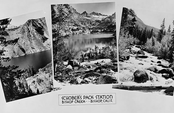 Old b&w postcard - bishop creek lodge